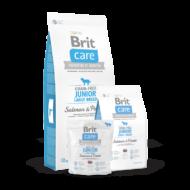 Brit Care Grain-Free Junior Large Breed Salmon and Potato 1 kg | Kutyatáp24