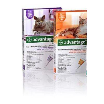 Advantage 80 cseppek 4 kg feletti macskának,  1 doboz (4db)