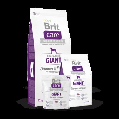Brit Care Grain-Free Giant Salmon and Potato 1 kg | Kutyatáp24