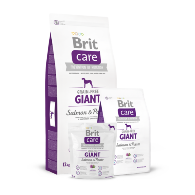 Brit Care Grain-Free Giant Salmon and Potato 1 kg   Kutyatáp24